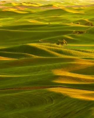 palouse sunset washington