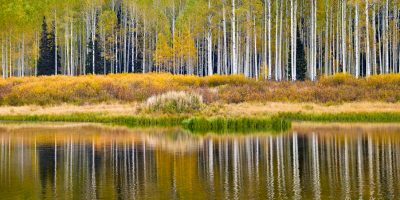 lake utah aspens reflections autumn