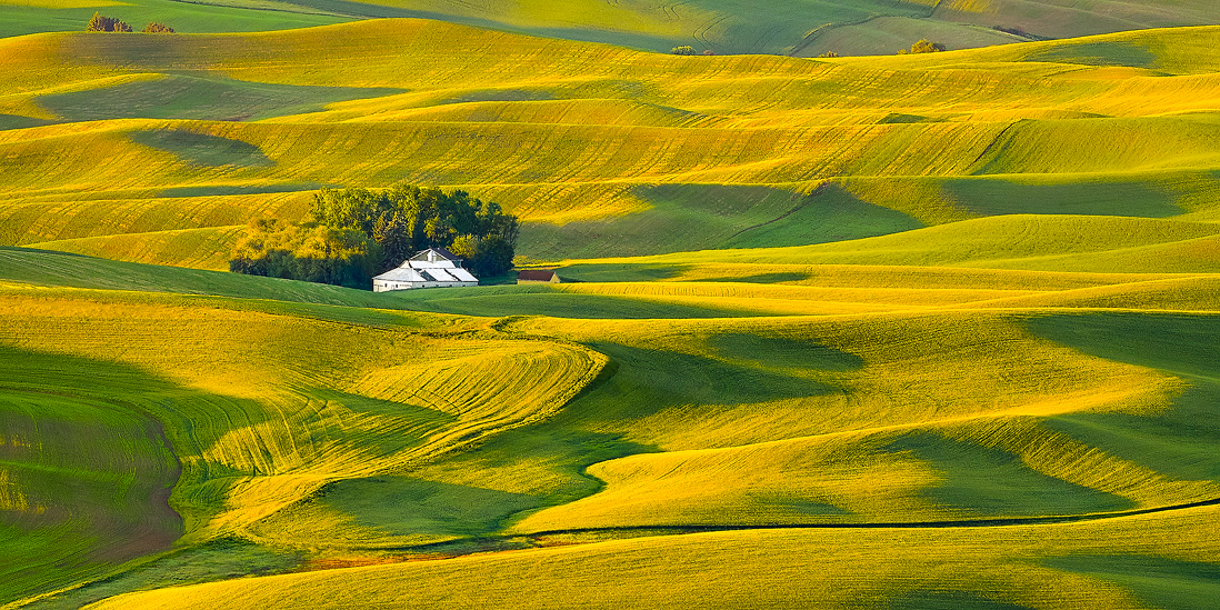 palouse washington sunrise