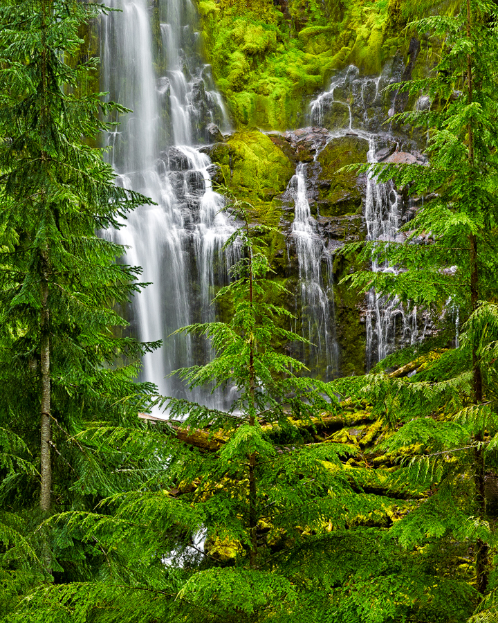 oregon proxy falls waterfall