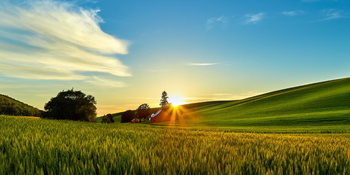 washington barn sunset palouse wheat