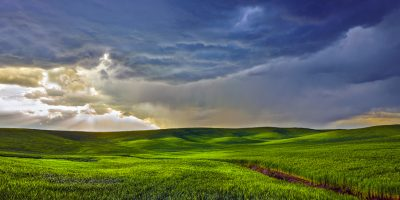 palouse wheat field storm rain